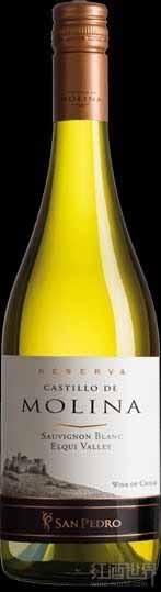 圣派德罗茉莉娜堡珍藏长相思干白葡萄酒(艾尔基谷)(Vina San Pedro Castillo de Molina Reserva Sauvignon Blanc,...)