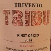 风之语部落灰皮诺干白葡萄酒(Trivento Tribu Pinot Grigio,Mendoza,Argentina)