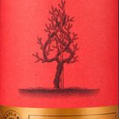 西夫拉姆老树赤霞珠干红葡萄酒(Saflam Old Vine Cabernet Sauvignon,Yantai,China)