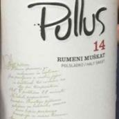Pullus 14 Rumeni Muskat