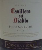 干露红魔鬼珍藏黑皮诺干红葡萄酒(Concha y Toro Casillero del Diablo Reserva Pinot Noir, Casablanca Valley, Chile)
