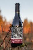 班布里奇黑皮诺干红葡萄酒(BainBridge Pinot Noir, Puget Sound, USA)