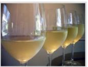 威廉森快乐长相思干白葡萄酒(Williamson Joy Sauvignon Blanc,Dry Creek Valley,USA)