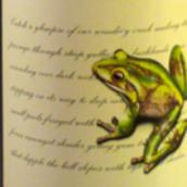 费格森福尔斯西拉干红葡萄酒(Ferguson Falls Shiraz,Geographe,Australia)
