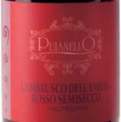 普亚莱洛酒庄蓝布鲁斯科半干型起泡葡萄酒(Cantina Puianello Lambrusco dell'Emilia Rosso Semisecco, Emilia-Romagna, Italy)