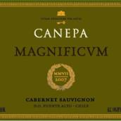卡尼帕金奖顶级赤霞珠干红葡萄酒(迈坡谷)(Canepa Magnificum Cabernet Sauvignon,Maipo Valley,Chile)