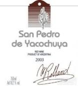 圣佩德罗混酿干红葡萄酒(San Pedro de Yacochuya Red Blend, Cafayate, Argentina)