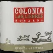 霍米伽伯纳达干红葡萄酒(Altos Las Hormigas Colonia Las Liebres Bonarda,Mendoza,...)