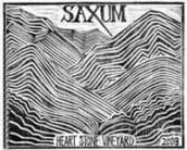 萨克斯姆心石园干红葡萄酒(Saxum Heart Stone Vineyard,Paso Robles,USA)